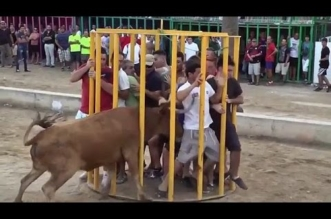 Funny Videos 2016 : People fails videos, bull fighting ,Try Not to Laugh or Grin While Watching This