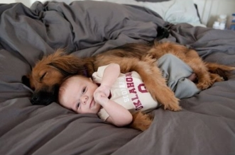 Funny Dogs Protecting Babies Compilation 2015