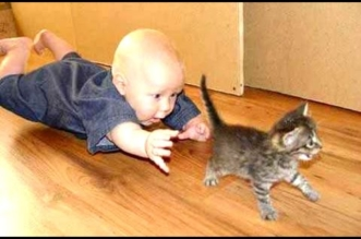 Kittens And Puppies Playing With Babies Compilation 2014 [NEW]
